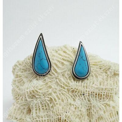 Ezüst fülsróf korall